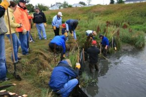 Group members maintaining Nose Creek
